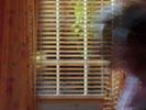 Ally McBeal photo 1 (episode s05e01)