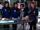 Bones photo 2 (episode s01e05)
