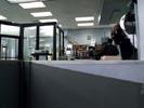 Cold Case photo 5 (episode s02e08)