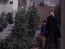 Everwood photo 5 (episode s01e15)