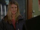 Everwood photo 8 (episode s02e20)