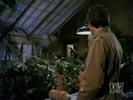 Max la menace photo 1 (episode s05e23)