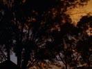 Ghost Whisperer photo 7 (episode s01e06)