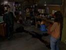 Ghost Whisperer photo 3 (episode s01e12)