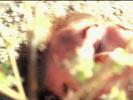 Ghost Whisperer photo 7 (episode s01e16)