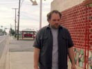 My Name is Earl photo 8 (episode s01e24)