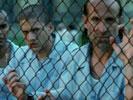 Prison Break photo 8 (episode s01e09)