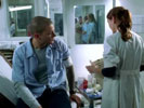 Prison Break photo 4 (episode s01e13)