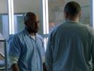 Prison Break photo 3 (episode s01e20)
