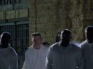 Prison Break photo 8 (episode s01e21)