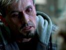 Prison Break photo 5 (episode s02e13)