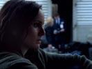 Prison Break photo 3 (episode s02e16)