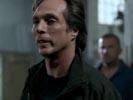 Prison Break photo 6 (episode s02e22)