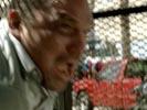 Prison Break photo 7 (episode s02e22)