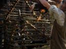 Stargate Atlantis photo 1 (episode s02e15)