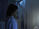 Stargate Atlantis photo 4 (episode s03e06)