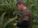 The Dead Zone photo 8 (episode s02e17)