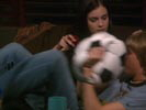 Weeds photo 4 (episode s01e01)